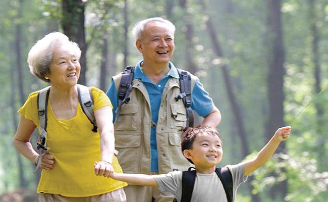 Thêm thu nhập để thực hiện ước mơ dang dở cùng bảo hiểm hưu trí