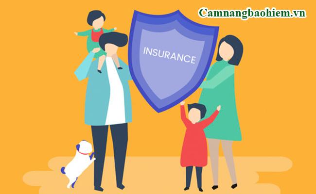 Các loại hình bảo hiểm tại Việt Nam