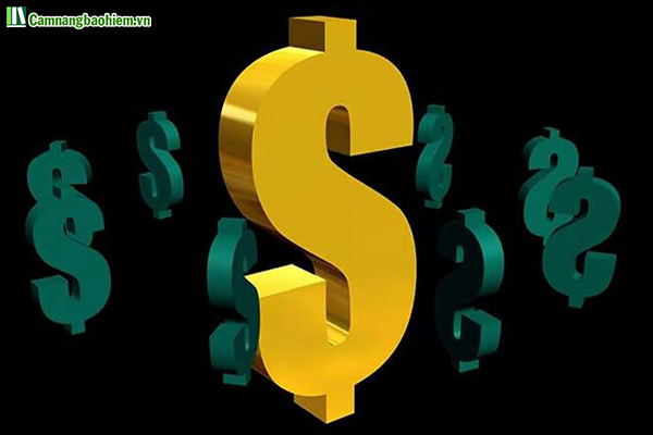 Vốn điều lệ của công ty bảo hiểm nhân thọ là gì?