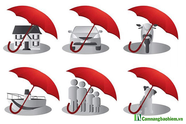 Khái niệm chi tiết về bảo hiểm nhân thọ và bảo hiểm phi nhân thọ hiểu thế nào?