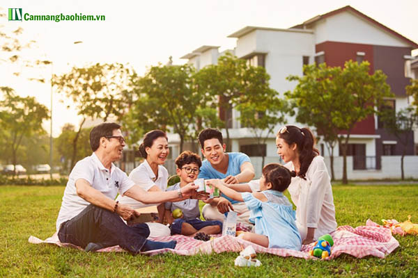 #Ý nghĩa và tầm quan trọng của bảo hiểm nhân thọ tại Việt Nam